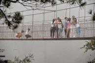 Jembatan Kaca 7