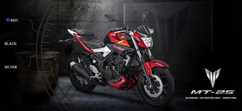 Yamaha MT-25 Red