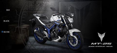 Yamaha MT-25 Silver