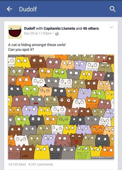 Dudolf - Cari Kucing