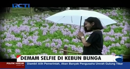 "Selfie di ""Taman"" Eceng Gondok Bantul"