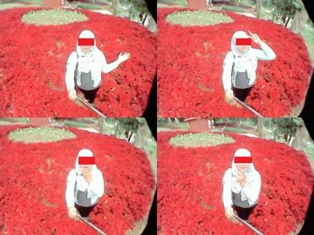 Alayer selfie di tengah taman bunga