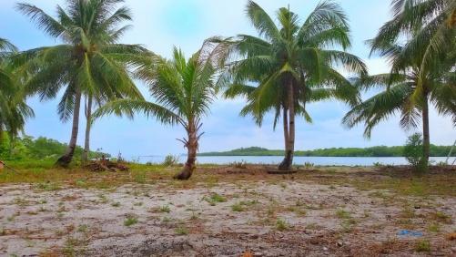 Balik lagi ke Pulau Rano