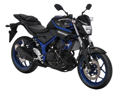 Yamaha MT-25 Blue Metalic