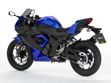 Kawasaki Ninja 125 (1)