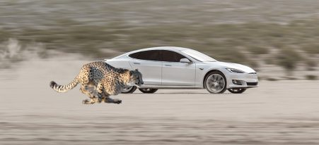 Tesla Cheetah Stance Launch Mode